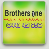 Brothers One Newcastle Tree Services