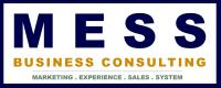 MESS Business Consulting