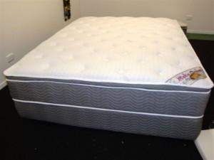 Queen Mattress Pillowtop Pocket Spring Model Ecstasy Makin Dreams Queensland Bedding